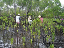 Community Based Environmental Conservation (COBEC)