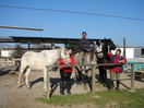 Thumb_us_with_3_rescued_horses