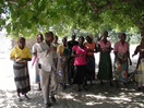 Thumb_punguine_community_dancing_solarpanel
