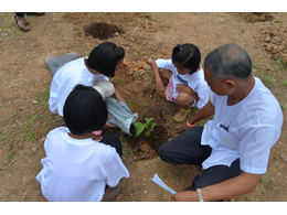 Planting Trees for Future Generations. It costs just ten cents to plant a tree. You can make an online donation. We also offer tree planting certificates that make a great gift. All donations are tax-deductible, and you will receive a receipt for tax purposes. It is our policy never to trade o