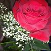 Fill 100x100 bp1480337594 crop original original img 0129