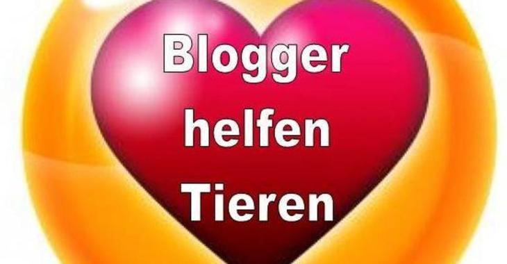 Fill 730x380 bloggerhelfentieren