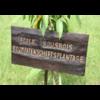 Ecole Sousbois-nachhaltige Bildung für Afrika e.V.