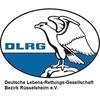 DLRG Bezirk Rüsselsheim e.V.